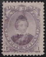 Newfoundland        .     Yvert  .    20     .     (*)    .             Geen  Gom  .     /   .    No Gum - 1865-1902