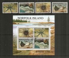 Faune Marine De L'île NORFOLK.,   Série 4  Timbres + Bloc-feuillet Oblitérés 1 ère Qualité - Ile Norfolk