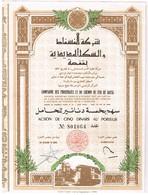 Ancienne Action - Compagnie Des Phosphates Et Du Chemin De Fer De Gafsa - Tunisie - Afrique