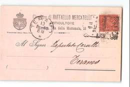 7960 FIRENZE MERCATELLI ORTICULTORE X TERAMO - 1878-00 Umberto I