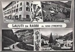 Saluti Da Rabbi - Trento - H4834 - Trento
