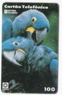 BRAZIL : R24C 100 U Parrot   92.25.03    TLR USED - Brésil