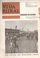 Golegã - Feira De S. Martinho Em 1968 - Vida Rural Nº 809 De 16 De Novembro De 1968 - Gerês - Santarém - Books, Magazines, Comics