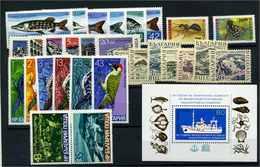 BULGARIEN Lot Auf Steckkarte Postfrisch (103267) - Bulgarien