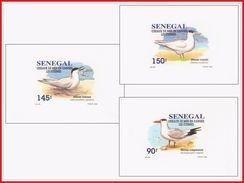 Senegal 1153/55  3 Feuillets De Luxe - Sénégal (1960-...)