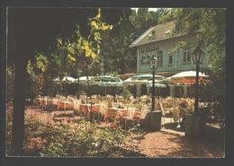 Bruxelles / Brussel - Chalet De La Forêt - Ses Jardins Fleuris - Sa Terrasse Chauffée - Cafés, Hôtels, Restaurants