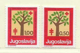 YOUGOSLAVIE  ( EU- 209 )  1977  N° YVERT ET TELLIER  N° 69/70    N** - Beneficiencia (Sellos De)