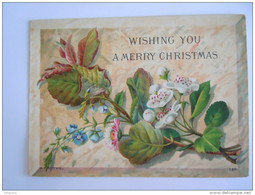 Mignonnette Wishing You A Merry Christmas Kerstroos Ellébore Used 1879 H. Rothe 220  Form. 9  X 12 Cm - Christmas
