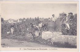 58 - Les VENDANGES EN NIVERNAIS  - La Cueillette - BEAU PLAN FUT TONNEAU - Francia