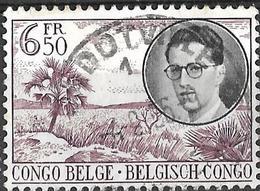 8BC-895:  JADOTVILLE - JADOTSTAD / 1 - Congo Belge