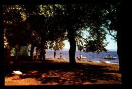 B8059 BOLSENZA - ROMANTIC CHEZ VOUS CAMPING BUNGALOWS TAVOLA CALDA - Italie