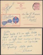 Publibel 732 - 65c - Thématique Laine (DD) DC0528 - Stamped Stationery