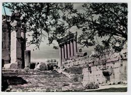 LEBANON   BAALBECK   THE  STEPS OF  BACCHUS & SIX  COLUMNS OF  JUPITER  TEMPLE      2 SCAN   (VIAGGIATA) - Libano