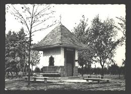 Moerzeke - Schipperskapel - Nels Photothill - 1958 - Hamme