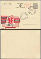 Publibel 1488 - 1F20 - Thématique Meubles, Ours (DD) DC0547 - Stamped Stationery