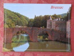 Dep 81 , Cpm BRASSAC Sur AGOUT , Le Vieux Pont Et Les Rives De L'Agout  (14.707) - Brassac