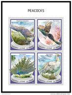 SIERRA LEONE 2018 MNH** Peacocks Pfauen Paons M/S - OFFICIAL ISSUE - DH1843 - Paons