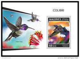 MALDIVES 2018 MNH** Colibri Kolibri S/S - IMPERFORATED - DH1843 - Hummingbirds