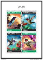MALDIVES 2018 MNH** Colibri Kolibri M/S - IMPERFORATED - DH1843 - Hummingbirds