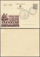 Publibel 1502 - 1F20 - Thématique Chien, SPA, Vélo (DD) DC0554 - Stamped Stationery