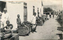 SOMALIE(BENADIR) DATTE(TYPE) - Somalie