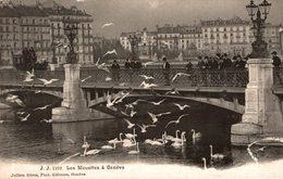 SUISSE LES MOUETTES A GENEVE - GE Genève