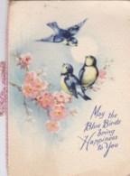 AL32 Birthday Greeting - Blue Tits, Blossom - Animals