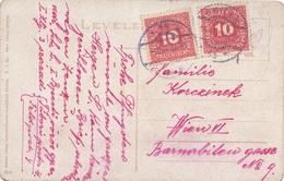 ÖSTERREICH NACHPORTO 1916 - 2x10 Heller Nachporto Auf Seltener Ak SZOLNOK, Czukorgyär - Portomarken