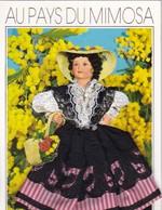 (Alb 1.11) Cartes Postale Habillée Ou Brodée (cette Carte à Pue être épinglée Au Mur Ou Collée Dans Un Album - Postales