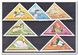 Mongolië 1973, Postfris MNH, Birds, Ducks - Mongolië