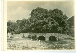 Vresse Sur Semois Pont St Lambert Impression Brillante Sur Carton Vernis Vers 1930 24,4 X 17,5 Cm - Reproductions