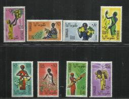 SOMALIA 1961 AGRICOLTURE AGRICOLTURA SERIE COMPLETA COMPLETE SET MNH POST AFIS - Somalia (1960-...)