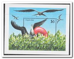 Antigua & Barbuda, Postfris MNH, Birds - Antigua En Barbuda (1981-...)