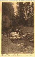 BOITSFORT   La Woluwe Au Parc De Boitsfort. - Watermaal-Bosvoorde - Watermael-Boitsfort