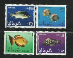 SOMALIA 1967 FAUNA FISHES FISH PESCI PESCE POISSONS POISSON SERIE COMPLETA COMPLETE SET MNH POST AFIS - Somalia (1960-...)