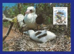 Christmas Island  1990  Mi.Nr. 306 , Weltweiter Naturschutz Abbottstölpel - Maximum Card - First Day  6 June 1990 - Christmas Island
