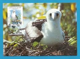 Christmas Island  1990  Mi.Nr. 303 , Weltweiter Naturschutz Abbottstölpel - Maximum Card - First Day  6 June 1990 - Christmas Island