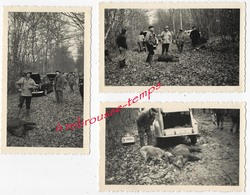 CHASSE En 1959 Et 1960 Forêt D'Avaise-prise Sanglier -chasseur Nommé- 3 Photos - Fotos