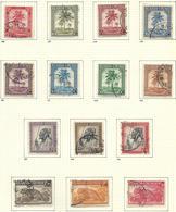 Palmiers O.C. 126/147 Oblitéré /gestempeld USED 22 V./W. O.C. 22,00€ - Ruanda