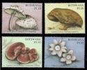 (227) Botswana  Mushrooms / Champignons / Funghi / Pilze / Paddestoelen ** / Mnh Michel 847-50 - Botswana (1966-...)