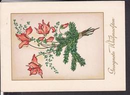 Postkarte Weihnachten , Blumen 1952 - Weihnachten