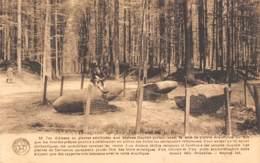 TERVURREN - Les Dolmens Dans Le Parc - Tervuren