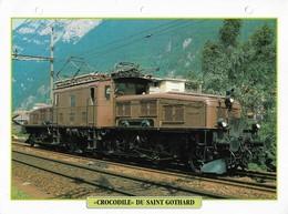 Fiche Editions Atlas Trains Locomotive Crocodile Du Saint Gothard - Chemin De Fer