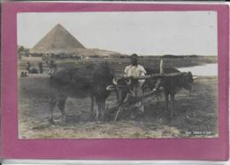 CAIRO LABOURER  IN EGYPT ( Carte Glacée ) - Cairo