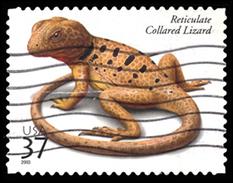 Etats-Unis / United States (Scott No.3816 - Reptiles And Amphibians) (o) - Verenigde Staten