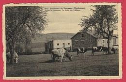 Freyneux ( Dochamps ) - Panorama ... Bucolique - Dans Le Lointain, Le Thier De Lafosse - 1962 ( Voir Verso ) - Manhay