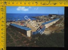 Bari Mola - Bari