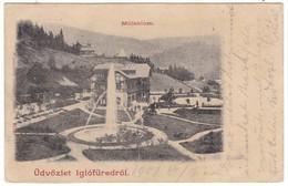 #8874 Slovakia, Iglofured Greetings Postcard Mailed 1901: Detail, Millenium - Slovaquie