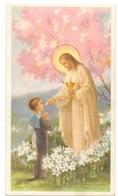 Devotie - Devotion - Communie Communion - Adelin De Waele - Belsele Waas 1954 - Communion