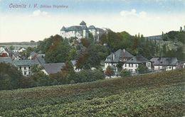 AK Oelsnitz Vogtland Schloss Voigtsberg Color ~1915 #02 - Oelsnitz I. Vogtl.